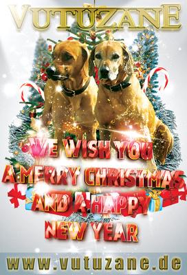 christmas_201314_400